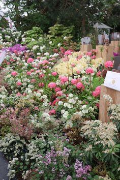 """So lovely!""   21 Things Overheard At The Chelsea Flower Show"
