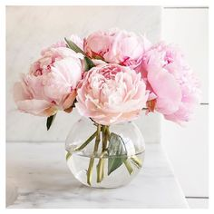 Wedding Bouquet on a Budget - Garden of Aquarius - Growing Peonies - How to Plant & Care for Peony Flowers Peonies Wedding Centerpieces, Peonies Centerpiece, Wedding Flowers, Wedding Bouquet, Fake Flower Centerpieces, Wedding Ceremony, Tulip Wedding, Centrepieces, Wedding Dresses