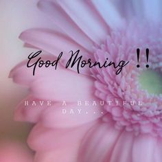 Are you searching for images for good morning handsome?Browse around this website for cool good morning handsome inspiration. These unique images will brighten your day. Beautiful Day Quotes, Great Day Quotes, Good Morning Beautiful Pictures, Good Morning Images Flowers, Morning Pictures, Have A Beautiful Day, Unique Quotes, Ballet Beautiful, Have A Great Day