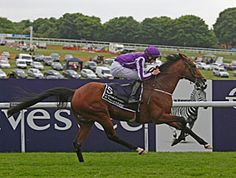 Coolmore and partners St Nicholas Abbey notched a record third consecutive Investec Coronation Cup (Eng-I) victory in convincing style on Derby day June 1 at Epsom. The 6-year-old Montjeu horse powered from near the back of the field and comfortably held off the charge of Australian champion stayer Dunaden to win by 3 3/4 lengths.