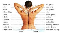 Spine problems are often the cause of pain in other parts of the body. Therefore, it is very important to pay attention to his spine. In back pain, one ca Home Remedies For Skin, Natural Remedies, Fitness Workouts, Ringing Ears Remedy, Spine Problems, Sante Bio, Types Of Arthritis, Skin Tag Removal, Lettering Tutorial