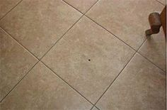 FIXING DAMAGED TILES  It happens to every household, you drop something heavy on the tile floor and the tile cracks or chips and you can't go without noticing it every time you walk into the room. Rarely the damage is so bad that there is a need to replace it.   To read visit: http://remodelinghomeimprovement.net/Orlando-Remodeling-Home-Improvement-Articles/fixing-damaged-tiles/