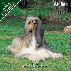 Afghan 2007 Dog Calendar