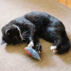 DIY mouse-shaped cat toy made from felt scraps.