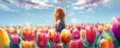 Field of tulips by Jon-Lock