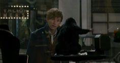 105 отметок «Нравится», 2 комментариев — Eddie Redmayne, OBE (@theeddieredmayne) в Instagram: «Fantastic Beasts final trailer - Photo: my screenshot, https://youtu.be/Vso5o11LuGU -…»