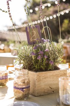 An Eco-Friendly Lavender And White Wedding with rustic yet eco friendly wedding details. Lavender Centerpieces, Wood Centerpieces, Rustic Wedding Centerpieces, Wedding Decorations, Table Decorations, Centrepiece Ideas, Rustic Weddings, Potted Plant Centerpieces, Table Arrangements