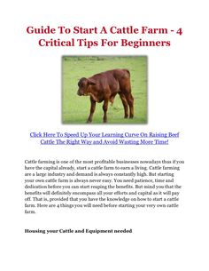 guide-to-start-a-cattle-farm-4-critical-tips-for-beginners by raisingbeefcattleguide via Slideshare