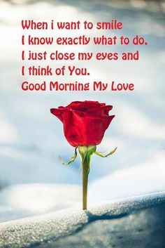 In today's post, we are going to present romantic good morning quotes and messages. If you are looking for romantic good morning quotes and messages, then you have come to the right place. Good Morning Sweetheart Quotes, Romantic Good Morning Quotes, Good Morning Love Messages, Good Morning Quotes For Him, Good Morning My Love, Good Morning Texts, Good Morning Greetings, Good Morning Beautiful Text, Gd Morning