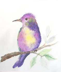 Watercolour paintings – Original watercolor painting, bird painting – a unique product by Radikacolours on DaWanda