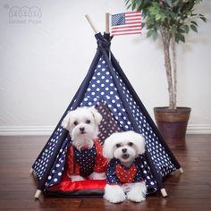 Are you ready for July 4th ? ...We are all set