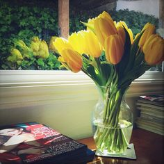"""""""Afternoon sun."""" Sometimes the simplest arrangements are the prettiest, like this bunch of tulips in a vase. A 'floral design' doesn't have to be fussy or have many kinds of flowers; this style is often called monobotanical, having all one kind of flower."""