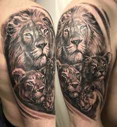 Фото тату Иван Торгашов for men ✌ Lion Cub Tattoo, Cubs Tattoo, Lioness Tattoo, Lion Head Tattoos, Mens Lion Tattoo, Lion Tattoo Design, Tattoos Skull, Mama Tattoos, Father Tattoos