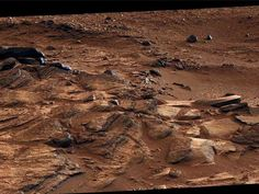 How to Prep for Life on Mars - Read more  http://www.rd.com/slideshows/life-on-mars/