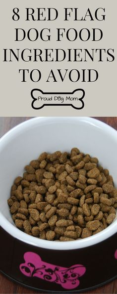 Pet Parents Beware: 8 Red Flag Dog Food Ingredients To Avoid | Dog Health Tips |
