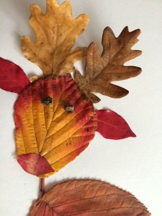 zip And grill Autumn Crafts, Autumn Art, Nature Crafts, Christmas Crafts For Kids, Leaf Crafts, Fun Crafts, Diy And Crafts, Arts And Crafts, Paper Crafts