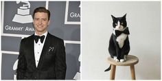 Hot Guys Who Look Like Cats (Because It's Thursday and Why Not?): Obsessed