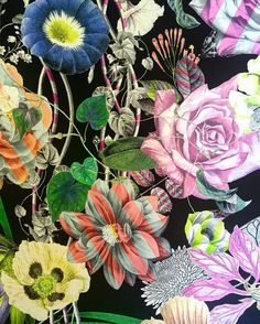 If you like Christian Lacroix Wallpaper, you might love these ideas