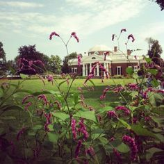 A Day at Jefferson's Monticello