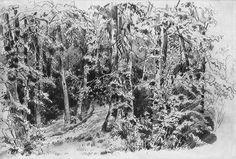В лиственном лесу 1880-е 30.6х45.9