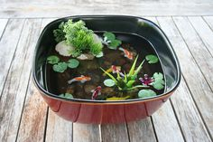 Lovely miniature koi fish ponds in resin