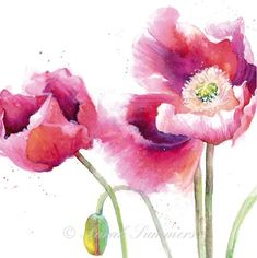 watercolour painting by Gudrun Heike