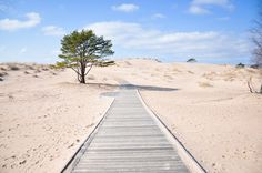 Finland is not generally known for an active beach life but Yyteri sand dunes on the west coast of Finland in Pori are worth visiting for their unbuilt and protected natural beauty.