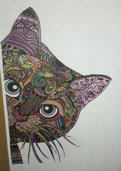cat (bad photo :(...)