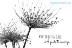 What to Buy in June: A Guide to Savings - My Mommy World