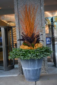 Winter urn arrangement - cut twigs, fresh cut greens, dyed kiwi vine, sugar pine cones, gold sinamay, fresh cut magnolia.