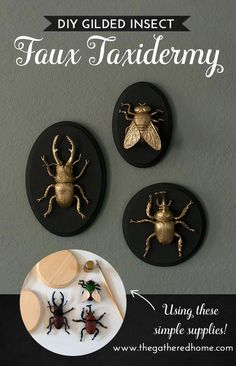 DIY Gilded Insect Faux Taxidermy These GIANT gilded insect art pieces are such a crazy, glam addi Holidays Halloween, Halloween Crafts, Halloween Party, Diy Halloween Decorations, Living Room Halloween Decor, Chic Halloween Decor, Halloween Bedroom, Halloween Flowers, Halloween Supplies