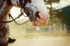 """Horses aren't my whole life...they make my life whole."""