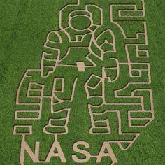 Spacey corn mazes #NASA #Halloween