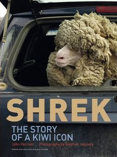 SHREK: the story of a Kiwi icon