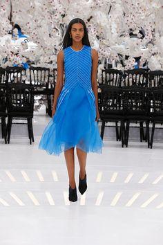 クリスチャン ディオール(Christian Dior) Haute Couture 2014AWコレクション Gallery59