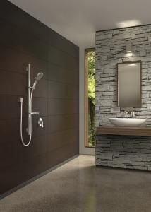 Nice schist feature wall