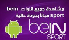 أفضل تطبيق لمشاهدة قنوات Bein Sports 2020و قنوات عالمية اخرى مجانا على الاندروايد Free Playlist, Tv En Direct, Football Streaming, Tv Channels, Smart Tv, Sports, Apps, Language, Stone