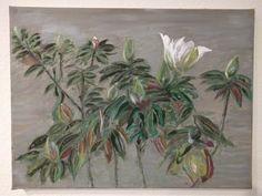 Magnolias (scheduled via http://www.tailwindapp.com?utm_source=pinterest&utm_medium=twpin&utm_content=post170439035&utm_campaign=scheduler_attribution)