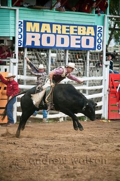 Bull rider in action at Mareeba Rodeo.  Mareeba, Queensland, Australia | Andrew Watson Photography