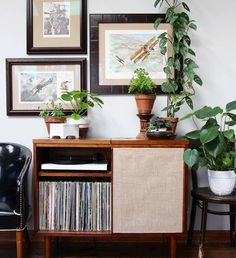 "158 Likes, 6 Comments - Traci | Tipsy Houseplant Blog (@plants.dont.wine) on Instagram: ""Records and plants. Two of my very favorite things. ✅ Who else loves to spend the evening…"""