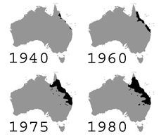 This map shows the progression of the cane toad population over 40 years. 29 Maps Of Australia That Will Kinda Blow Your Mind Australia Information, Nyc Subway Map, Highway Map, Australia Map, Western Australia, Coloring Pages Inspirational, World Thinking Day, Blow Your Mind, Cartography
