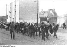 Warteland, Poland, Deportation of Jews from the district by the German police. Jewish History, World History, German Police, After Dark, World War Two, Wwii, Street View, Digital, Pictures