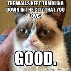 Hahahaha points for Bastille reference-Grumpy Cat
