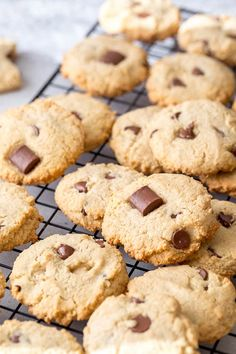 Lots of cookies piled on a cooling rack. These gluten free, dairy free, egg free almond cookies are chewy and delicious. So much flavor in every bite, you won't believe how good they are! Plus, these paleo cookies are unbelievably easy to make. #glutenfreecookies #chocolatechipcookies #paleocookies #almondcookies #glutenfree #dairyfree #eggfree #vegancookies