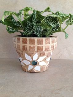 A personal favorite from my Etsy shop https://www.etsy.com/listing/255942450/mosaic-succulent-planter-small-flower