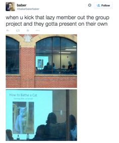 23 Reasons Why Group Projects Should Be Wiped Off The Face Of The Earth