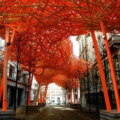 Quinze Public Art immersive experience