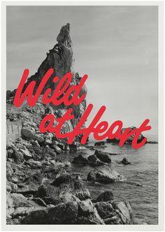 Klas Herbert Logotype & poster for swedish band Wild at Heart. Stockholm 2010.