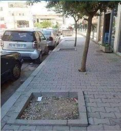 One job. You had one job! Funny Fails, Funny Memes, Job Memes, Videos Funny, Funny Quotes, Funniest Memes, Funny Pranks, Photo Facebook, Construction Fails