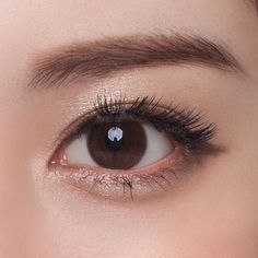 NEO Monet Brown circle lenses with simple enlargement rim. These toric color contacts are designed for people with astigmatism. SHOP NOW